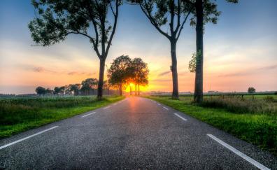 Road, highway, trees, landscape, sunset