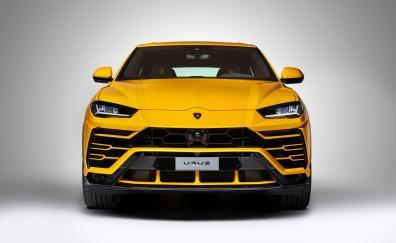 Lamborghini urus front view