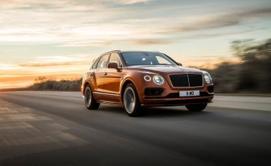 On-road, luxurious car, Bentley Bentayga