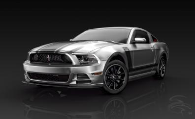 Silver 2013 ford mustang boss 302 front