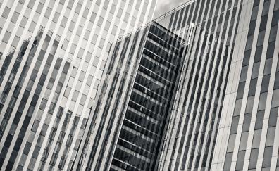 Architecture building black and white