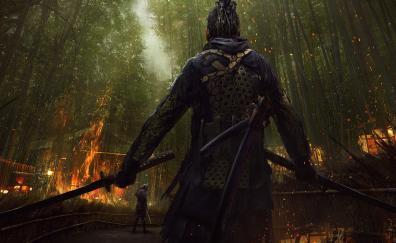 Samurai warrior art