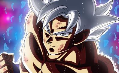 Anime goku white hair ultra instinct