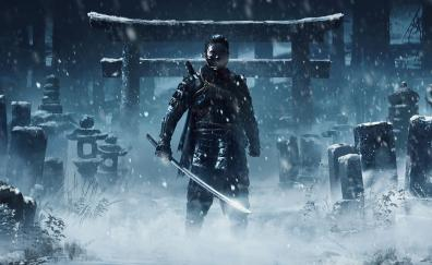 Warrior ghost of tsushima video game art