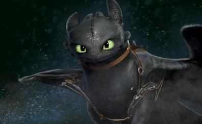 Dragon toothless how to train your dragon 2