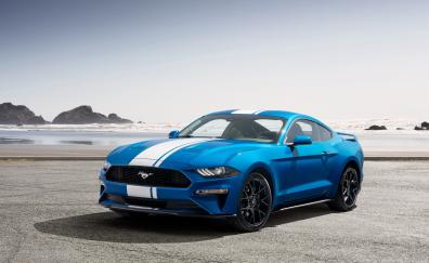 Ford mustang ecoboost performance pack one