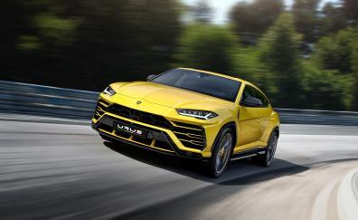 Lamborghini urus on road