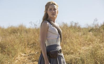 Beautiful actress westworld series