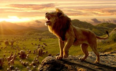 6 The Lion King Hd Wallpapers Desktop Pc Laptop Mac