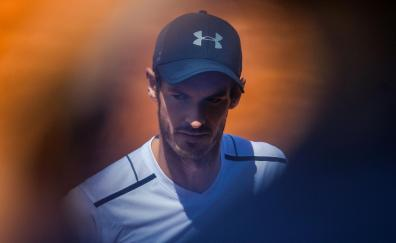 Andy murray teniss sport