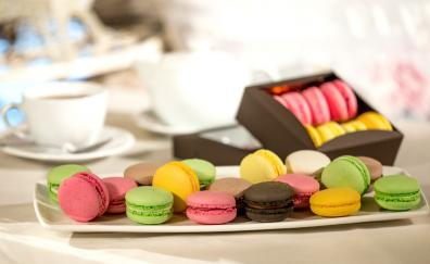 Macaron colorful sweets