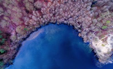 Nature, aerial view, color, lake, forest, colorful