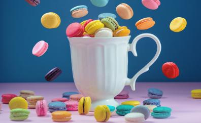 Sweets colorful macaron and cup