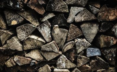 Firewood texture wooden log