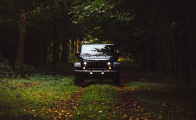 Black jeep forest 5k jeep wrangler